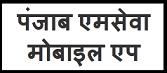 पंजाब एमसेवा मोबाइल एप   पूरी जानकारी   कैसे मिलेगा लाभ