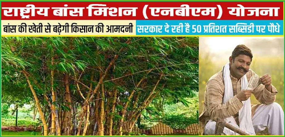 National Bamboo Mission Scheme